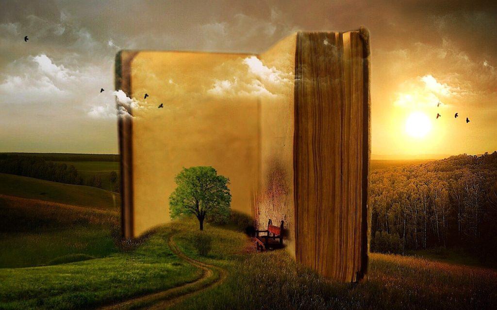 Lecture-livre ouvert-imaginaire